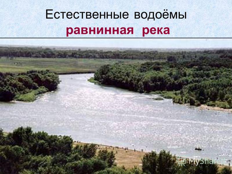 Естественные водоёмы равнинная река Равнинная река