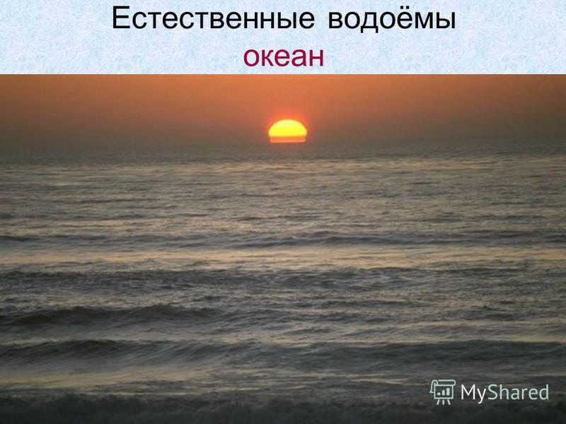 Естественные водоёмы океан
