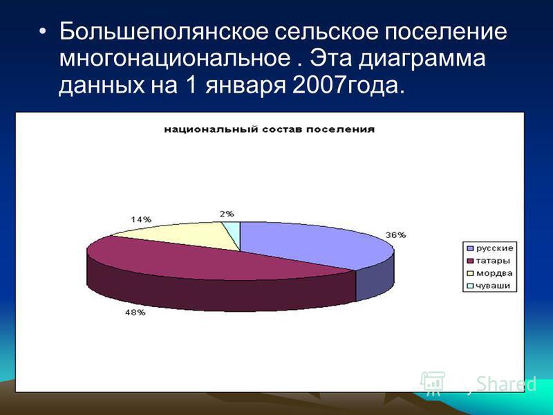 Большеполянское сельское поселение многонациональное. Эта диаграмма данных на 1 января 2007 года.