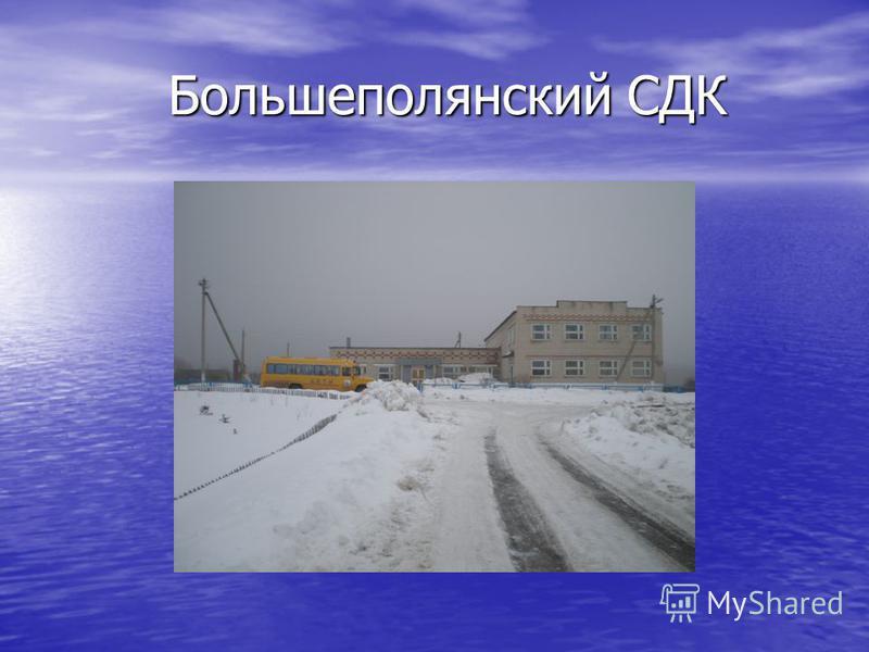 Большеполянский СДК Большеполянский СДК