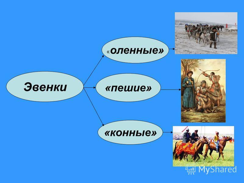 Эвенки «пешие» « коленные» «конные»