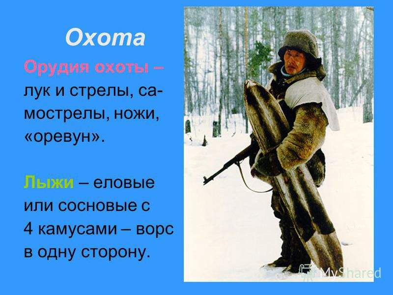 Охота Орудия охоты – лук и стрелы, самострелы, ножи, «оревун». Лыжи – еловые или сосновые с 4 камусами – ворс в одну старону.