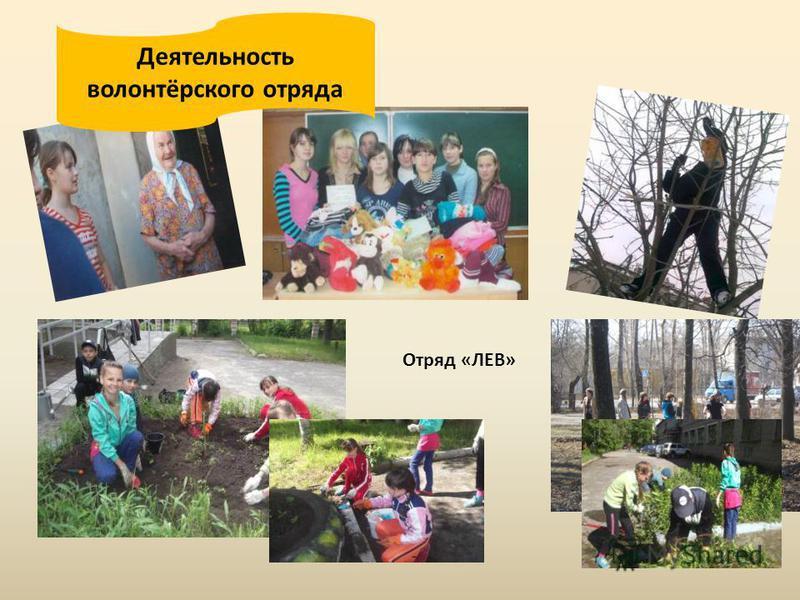 Деятельность волонтёрского отряда Отряд «ЛЕВ»
