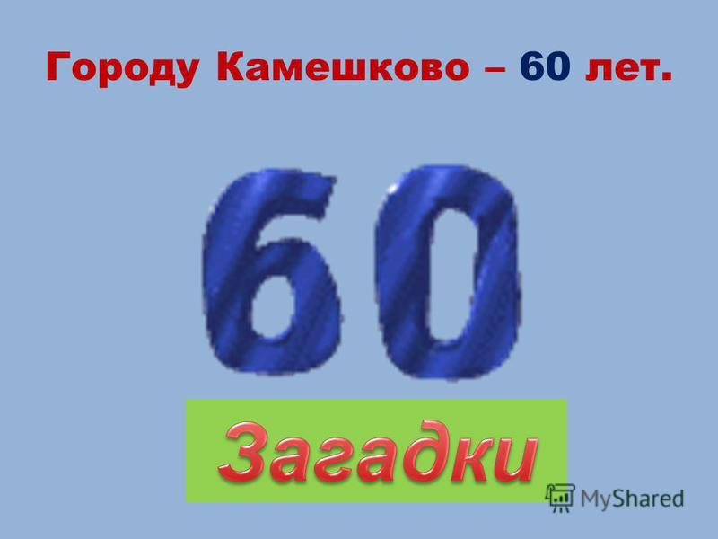 Городу Камешково – 60 лет.