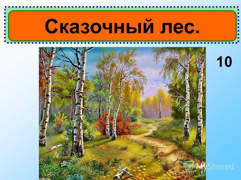 10 Сказочный лес.