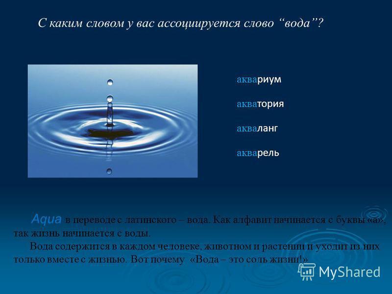 С каким словом у вас ассоциируется слово вода? аквариум акватория акваланг акварель Aqua в переводе с латинского – вода. Как алфавит начинается с буквы «а», так жизнь начинается с воды. Вода содержится в каждом человеке, животном и растении и уходит