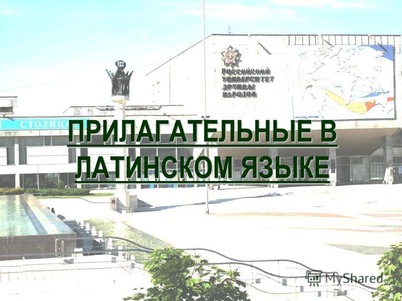 ПРИЛАГАТЕЛЬНЫЕ В ЛАТИНСКОМ ЯЗЫКЕ