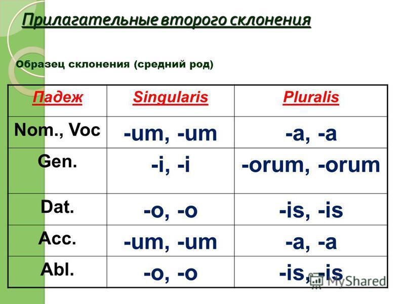 Прилагательные второго склонения Образец склонения (средний род) ПадежSingularisPluralis Nom., Voc -um, -um-a, -a Gen. -i, -i-orum, -orum Dat. -o, -o-is, -is Acc. -um, -um-a, -a Abl. -o, -o-is, -is