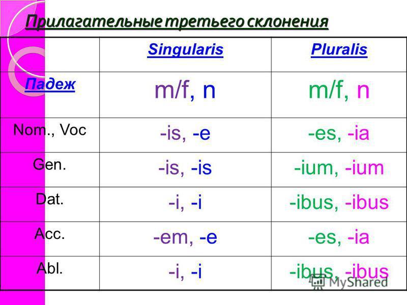 Прилагательные третьего склонения SingularisPluralis Падеж m/f, n Nom., Voc -is, -e-es, -ia Gen. -is, -is-ium, -ium Dat. -i, -i-ibus, -ibus Acc. -em, -e-es, -ia Abl. -i, -i-ibus, -ibus