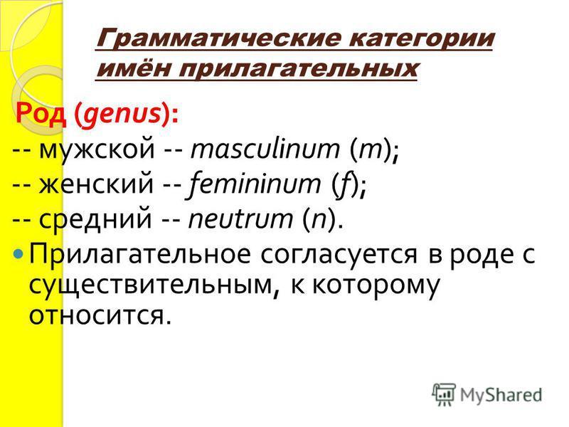Грамматические категории имён прилагательных Род (genus): -- мужской -- masculinum (m); -- женский -- femininum (f); -- средний -- neutrum (n). Прилагательное согласуется в роде с существительным, к которому относится.