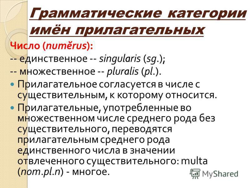 Грамматические категории имён прилагательных Число (num ĕ rus): -- единственное -- singularis (sg.); -- множественное -- pluralis (pl.). Прилагательное согласуется в числе с существительным, к которому относится. Прилагательные, употребленные во множ