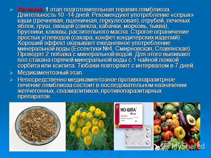 Лечение. 1 этап подготовительная терапия лямблиоза. Длительность 10 -14 дней. Рекомендуют употребление «серых» каши (гречневая, пшеничная, геркулесовая), отрубей, печеных яблок, груш, овощей (свекла, кабачки, морковь, тыква), брусники, клюквы, растит