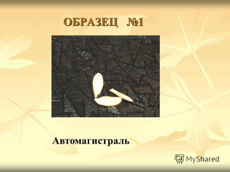 ОБРАЗЕЦ 1 Автомагистраль