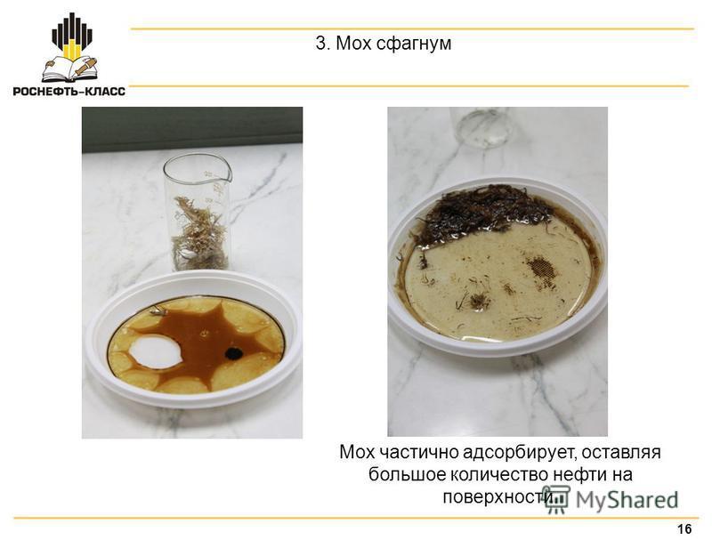 16 3. Мох сфагнум Мох частично адсорбирует, оставляя большое количество нефти на поверхности.