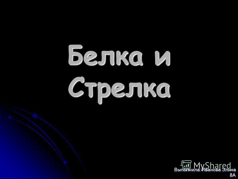 Белка и Стрелка Выполнила: Иванова Элина 8А