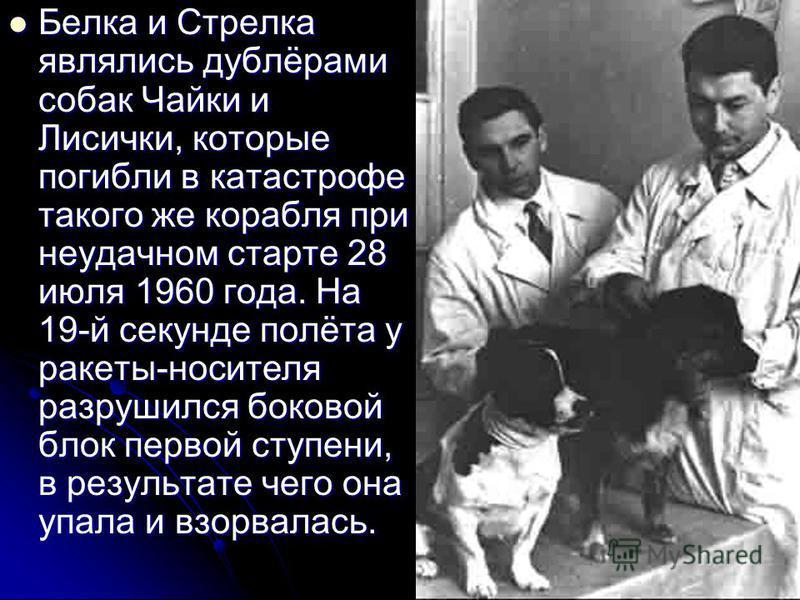 Белка и Стрелка являлись дублёрами собак Чайки и Лисички, которые погибли в катастрофе такого же корабля при неудачном старте 28 июля 1960 года. На 19-й секунде полёта у ракеты-носителя разрушился боковой блок первой ступени, в результате чего она уп