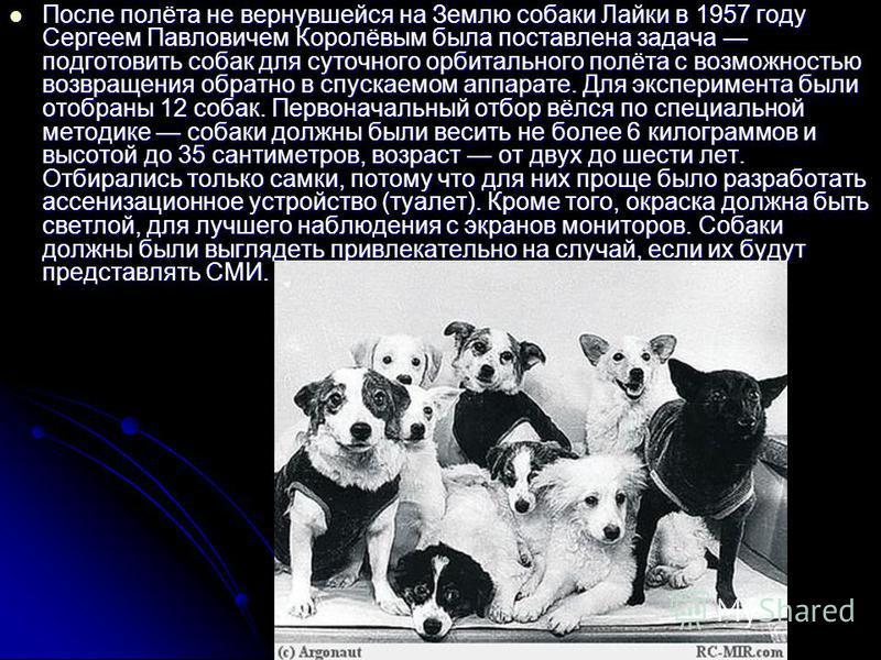 После полёта не вернувшейся на Землю собаки Лайки в 1957 году Сергеем Павловичем Королёвым была поставлена задача подготовить собак для суточного орбитального полёта с возможностью возвращения обратно в спускаемом аппарате. Для эксперимента были отоб