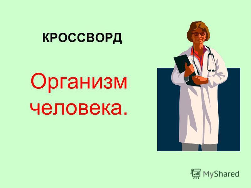 КРОССВОРД Организм человека.