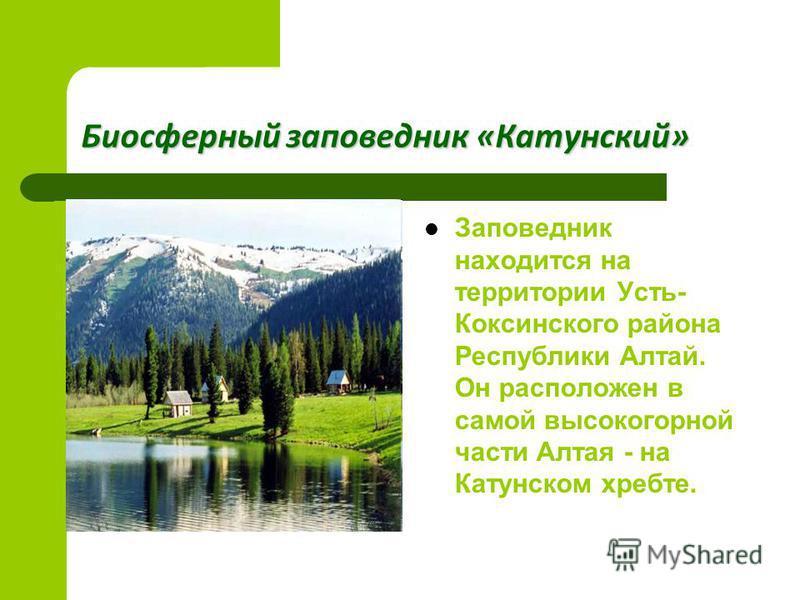 Биосферные заповедники Биосферный заповедник - типичный участок природы нетронутый или слегка измененный хозяйственной деятельностью. Типичный биосферный заповедник представляет собой саморегулирующуюся природную систему. Биосферный заповедник - типи