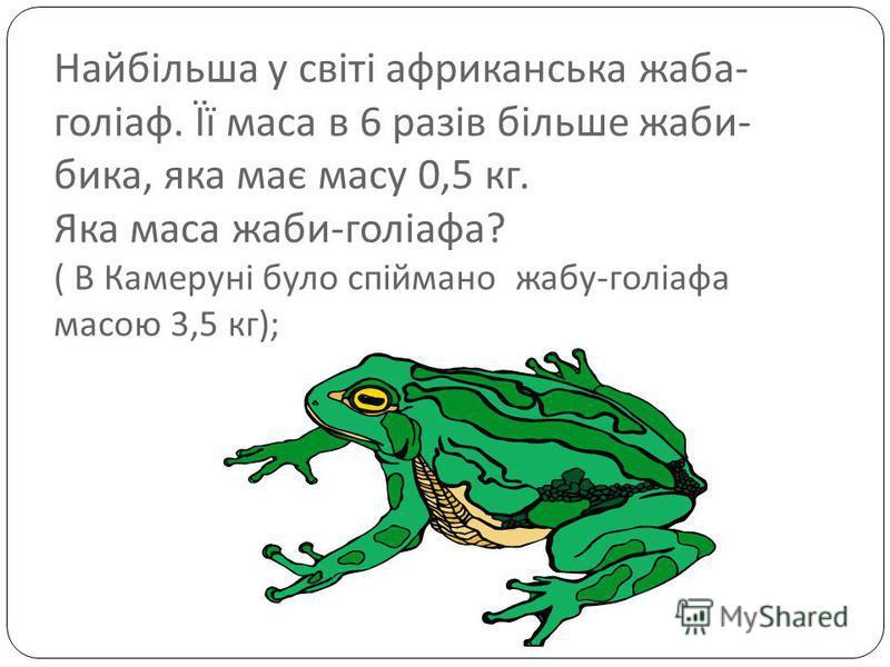 Найбільша у світі африканська жаба - голіаф. Її маса в 6 разів більше жаби - бика, яка має масу 0,5 кг. Яка маса жаби - голіафа ? ( В Камеруні було спіймано жабу - голіафа масою 3,5 кг );