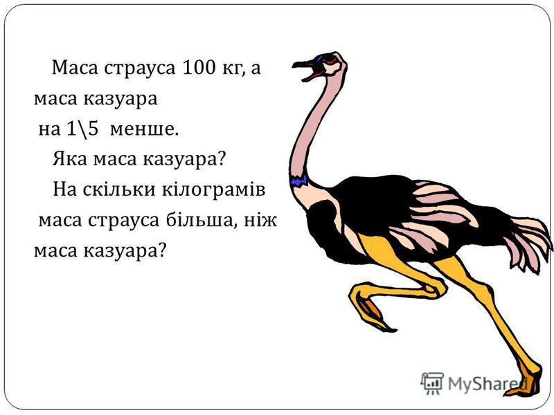 Маса страуса 100 кг, а маса казуара на 1\5 менше. Яка маса казуара ? На скільки кілограмів маса страуса більша, ніж маса казуара ?