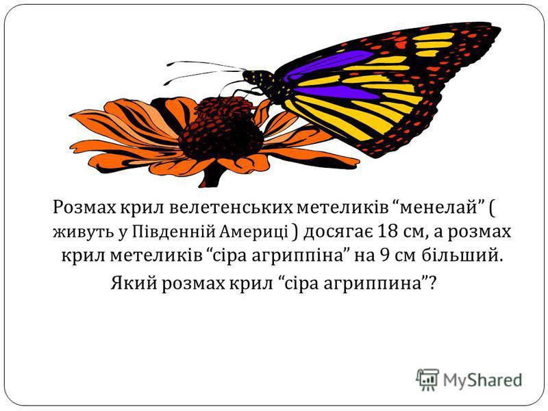 Розмах крил велетенських метеликів менелай ( живуть у Південній Америці ) досягає 18 см, а розмах крил метеликів сіра агриппіна на 9 см більший. Який розмах крил сіра агриппина ?
