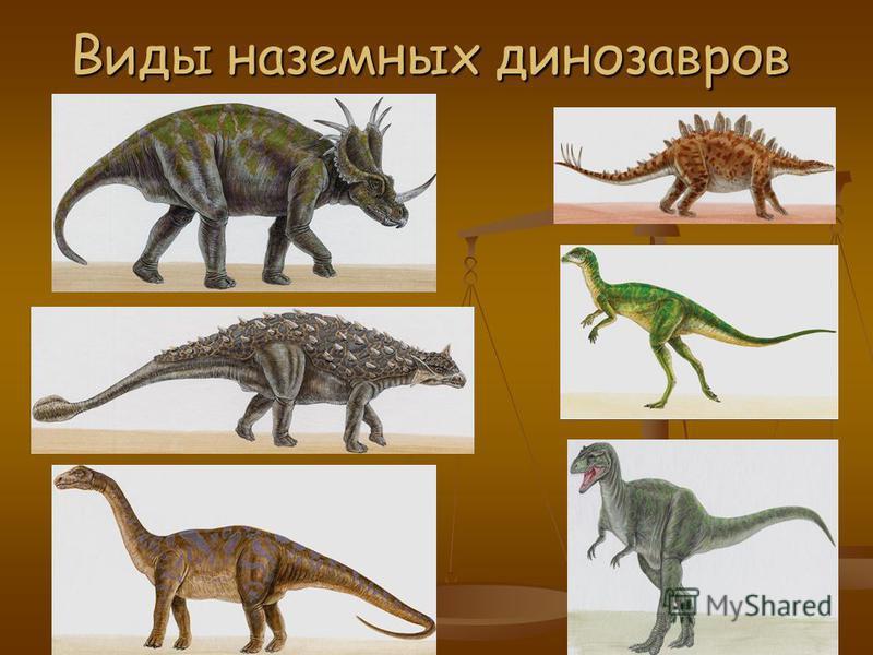 Виды динозавров Плавающие Наземные Летающие