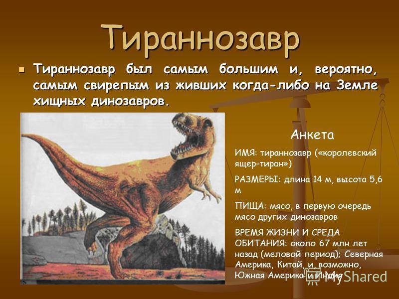 Виды наземных динозавров