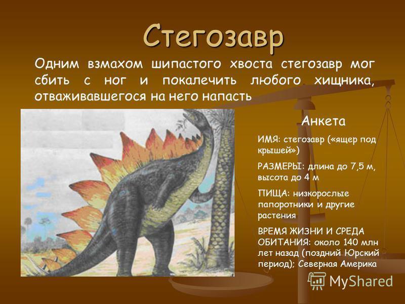 Трицератопс Трицератопс рогатый динозавр. Его длина два автомобиля, а вес пять носорогов. Анкета ИМЯ: трицератопс («морда с тремя рогами») РАЗМЕРЫ: длина до 9 м, высота 3 м ПИЩА: любые растения ВРЕМЯ ЖИЗНИ И СРЕДА ОБИТАНИЯ: 70-66 млн лет назад (поздн