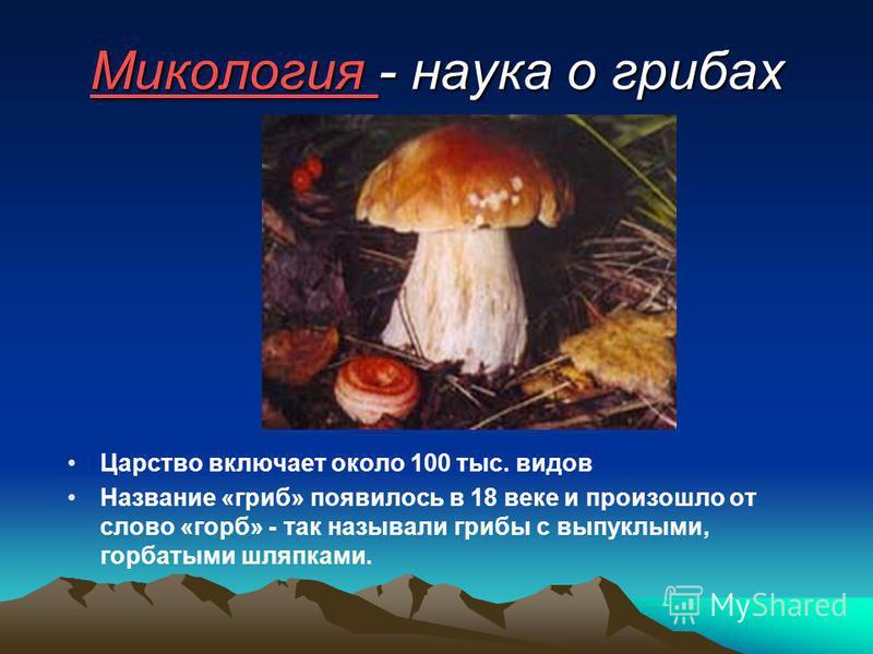 Микология Микология - наука о грибах Царство включает около 100 тыс. видов Название «гриб» появилось в 18 веке и произошло от слово «горб» - так называли грибы с выпуклыми, горбатыми шляпками.