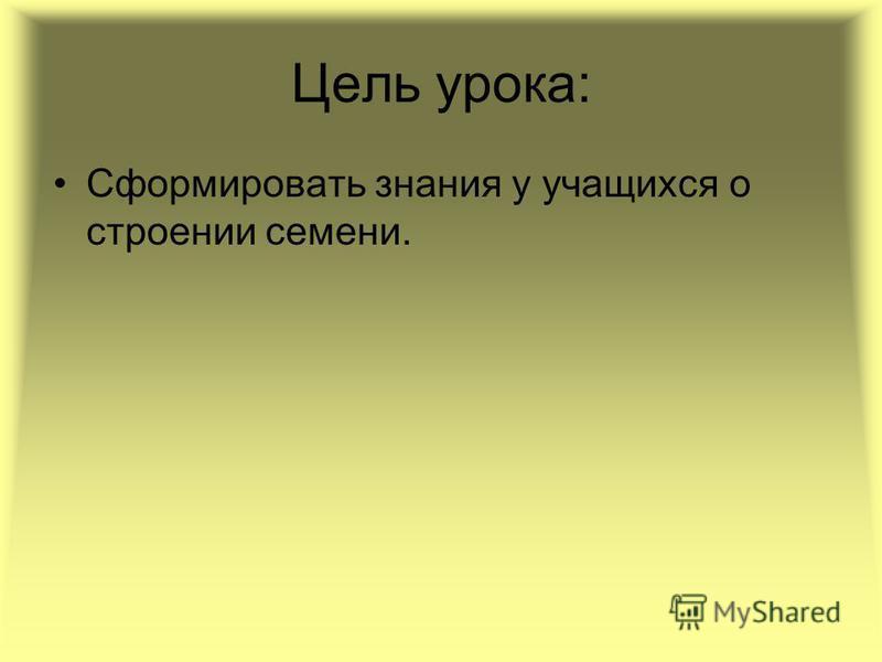 МОУ Заболотовская СОШ Коленова Ю.Н. Семя и его строение