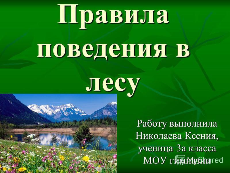 Правила поведения в лесу Работу выполнила Николаева Ксения, ученица 3 а класса МОУ гимназии