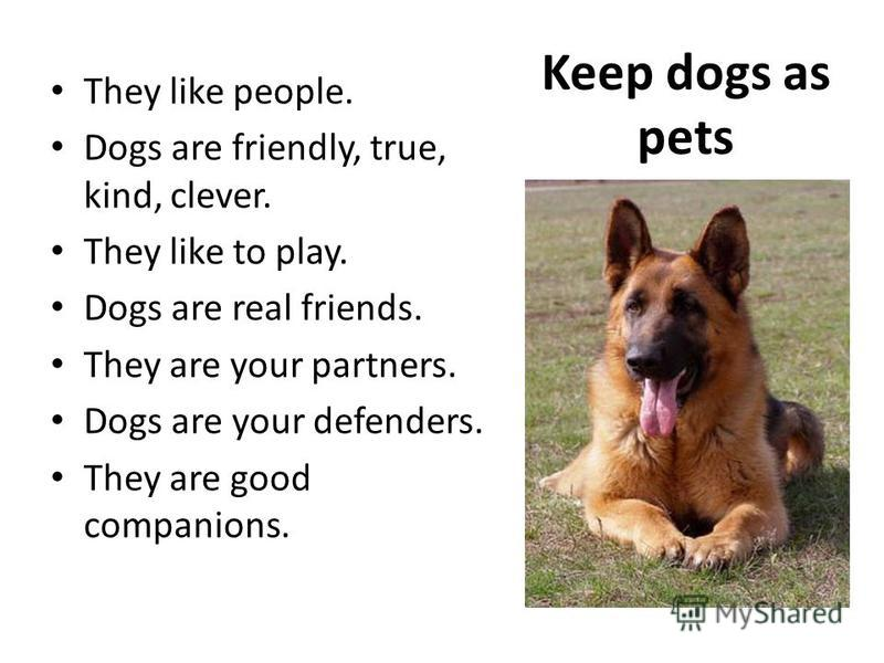Keep dogs as pets They like people. Dogs are friendly, true, kind, clever. They like to play. Dogs are real friends. They are your partners. Dogs are your defenders. They are good companions.