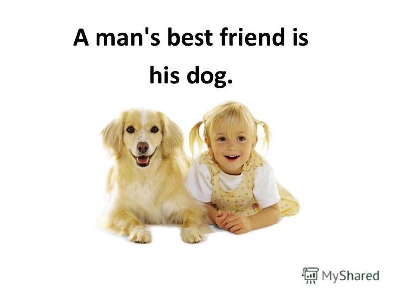 A man's best friend is his dog.