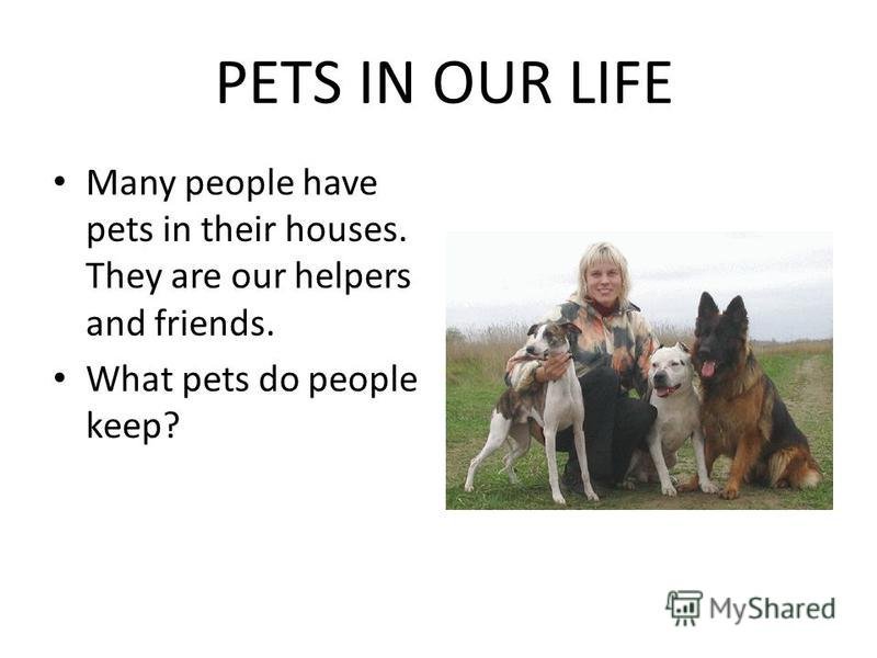 PETS IN OUR LIFE Many people have pets in their houses. They are our helpers and friends. What pets do people keep?