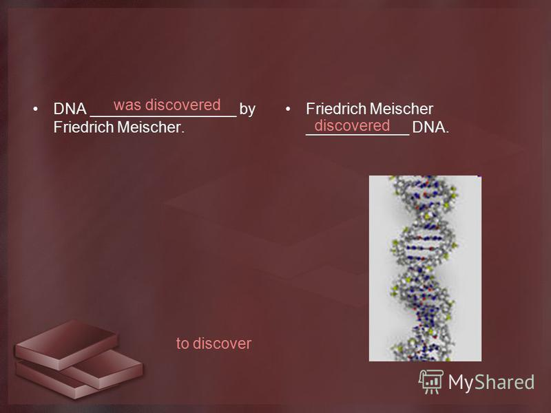 DNA _________________ by Friedrich Meischer. Friedrich Meischer ____________ DNA. to discover was discovered discovered