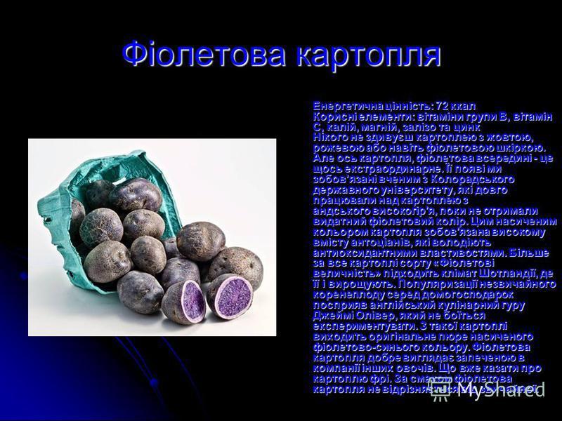 Фіолетова картопля Енергетична цінність: 72 ккал Корисні елементи: вітаміни групи В, вітамін С, калій, магній, залізо та цинк Нікого не здивуєш картоплею з жовтою, рожевою або навіть фіолетовою шкіркою. Але ось картопля, фіолетова всередині - це щось
