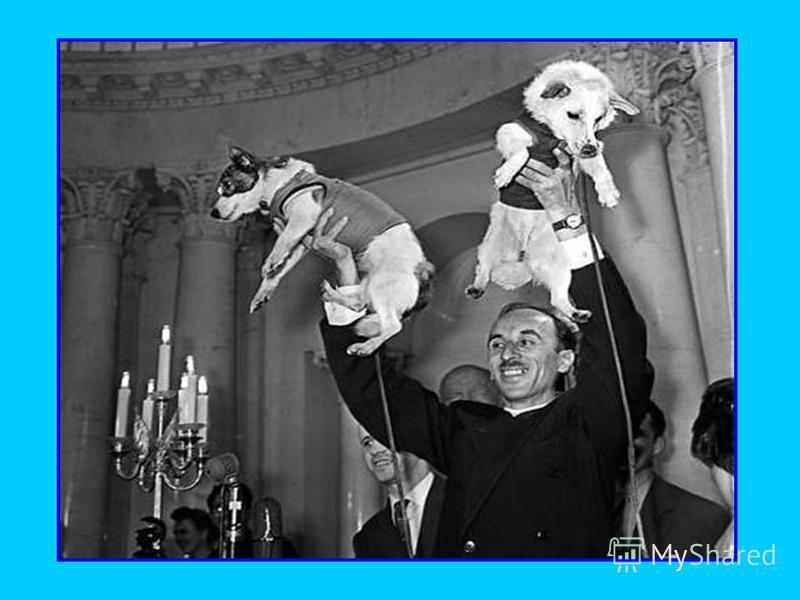 Ноябрь 1957 г – второй спутник с пассажиром на борту (собака Лайка)