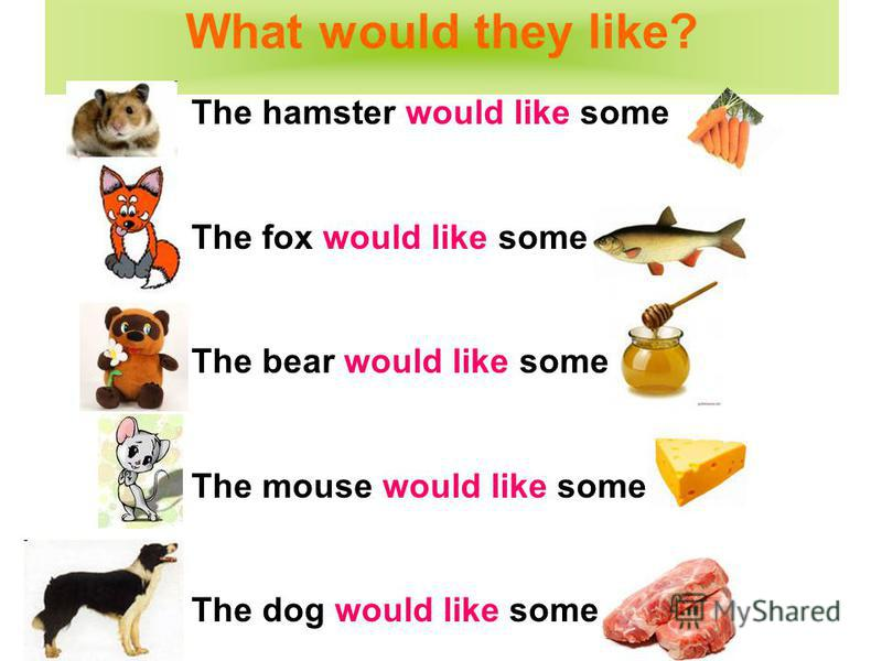 The hamster would like some The fox would like some The bear would like some The mouse would like some The dog would like some What would they like?