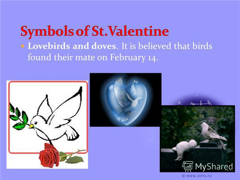 Lovebirds and doves. It is believed that birds found their mate on February 14.