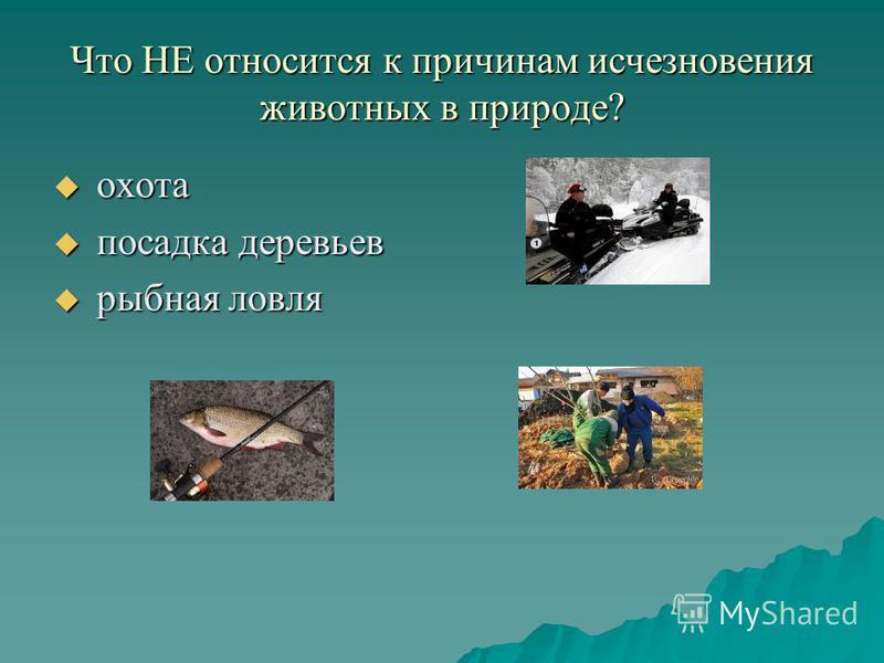 Что НЕ относится к причинам исчезновения животных в природе? о охота п посадка деревьев р рыбная ловля
