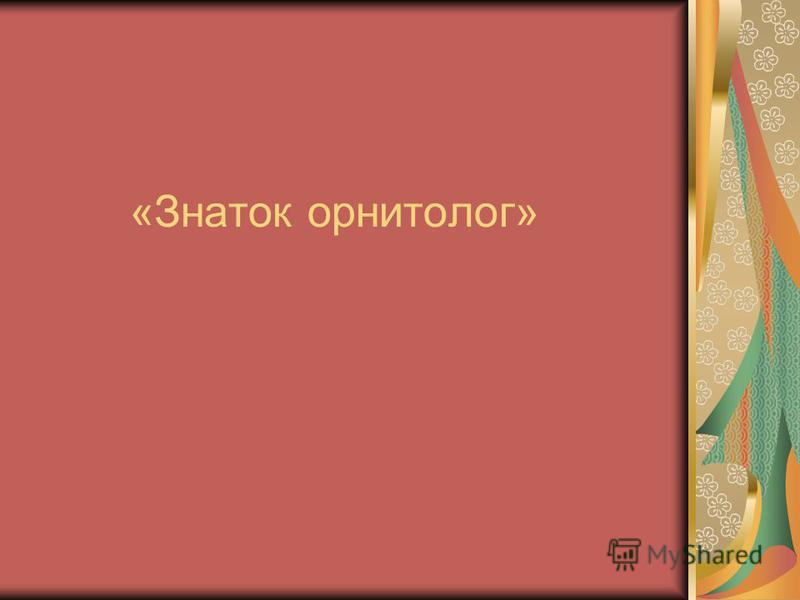 «Знаток орнитолог»
