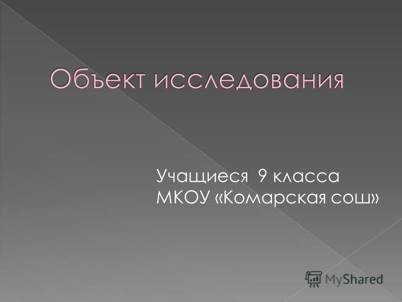Учащиеся 9 класса МКОУ «Комарская сош»