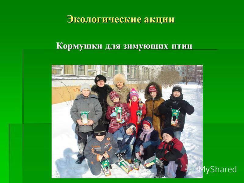 Экологические акции Кормушки для зимующих птиц Кормушки для зимующих птиц