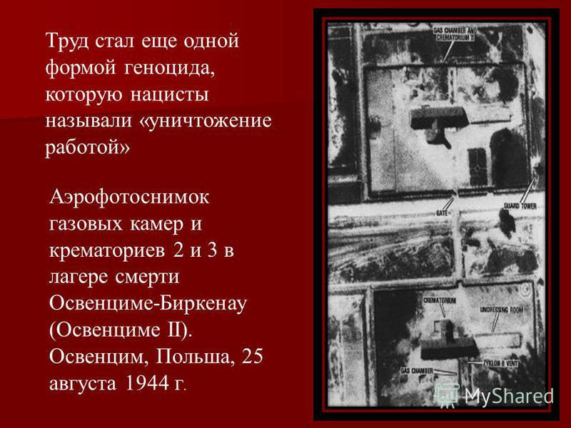 Аэрофотоснимок газовых камер и крематориев 2 и 3 в лагере смерти Освенциме-Биркенау (Освенциме II). Освенцим, Польша, 25 августа 1944 г. Труд стал еще одной формой геноцида, которую нацисты называли «уничтожение работой»