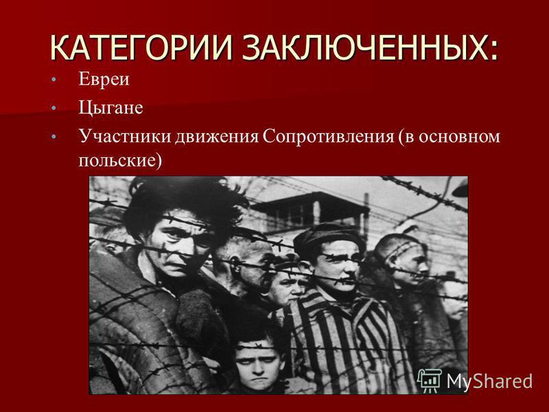 КАТЕГОРИИ ЗАКЛЮЧЕННЫХ: Евреи Цыгане Участники движения Сопротивления (в основном польские)