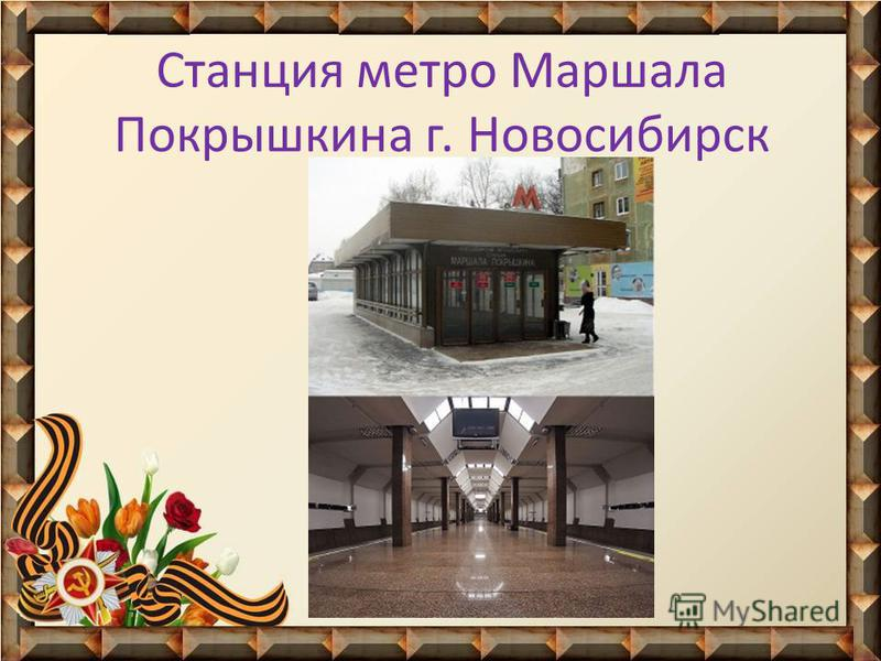Станция метро Маршала Покрышкина г. Новосибирск