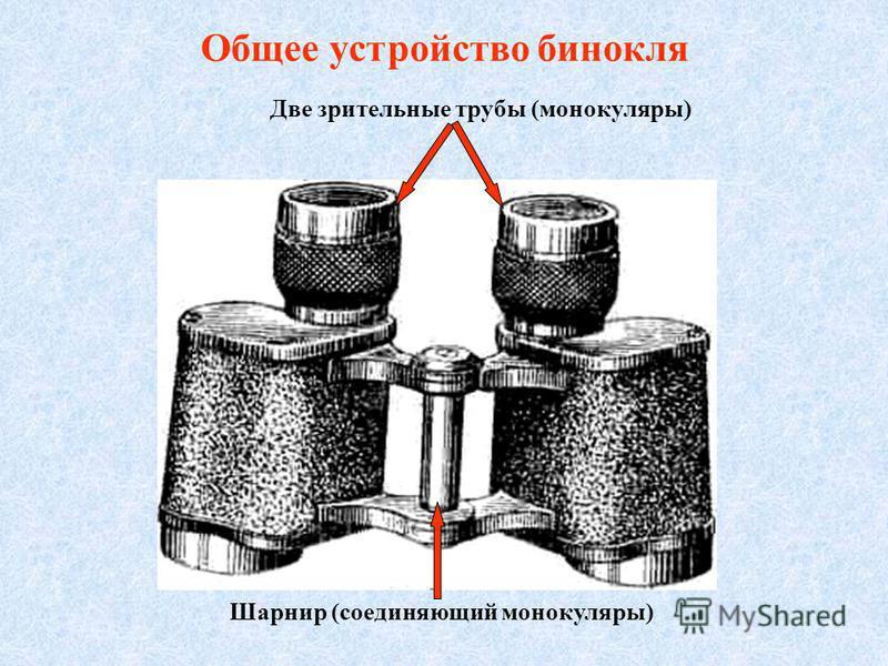 Общее устройство бинокля Две зрительные трубы (монокуляры) Шарнир (соединяющий монокуляры)