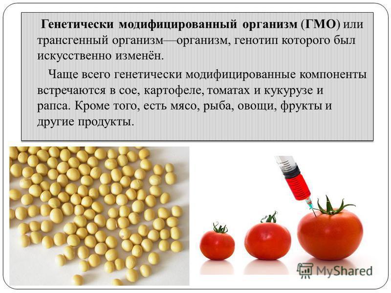 Генетически модифицированный организм (ГМО) или трансгенный организм, генотип которого был искусственно изменён. Чаще всего генетически модифицированные компоненты встречаются в сое, картофеле, томатах и кукурузе и рапса. Кроме того, есть мясо, рыба,