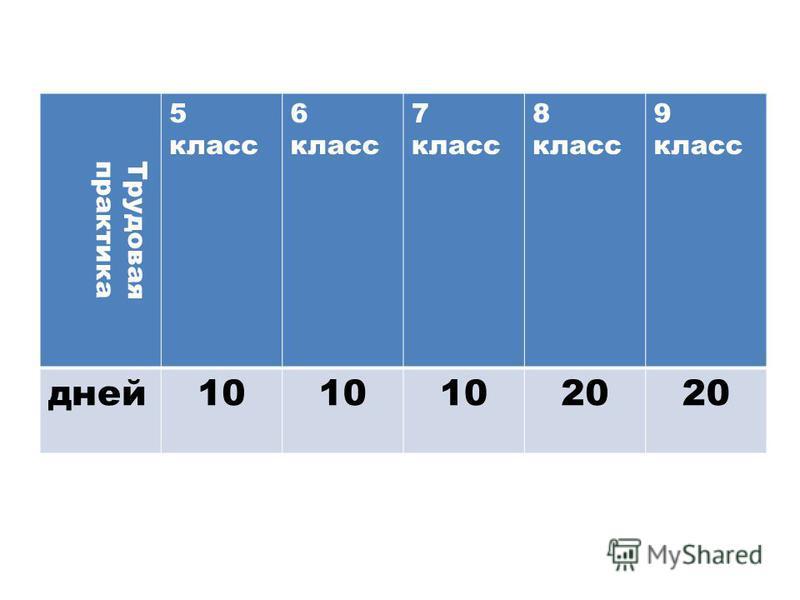 Трудоваяпрактика 5 класс 6 класс 7 класс 8 класс 9 класс дней 10 20